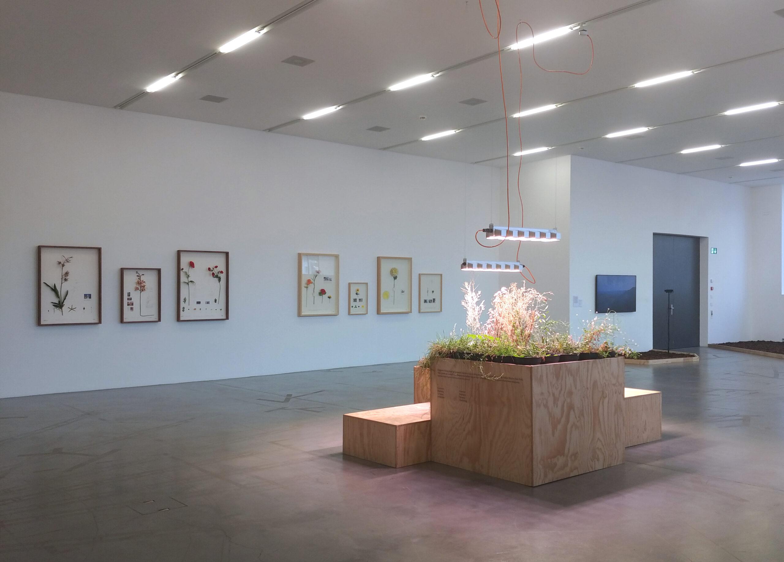 Migros Museum of Contemporary Art